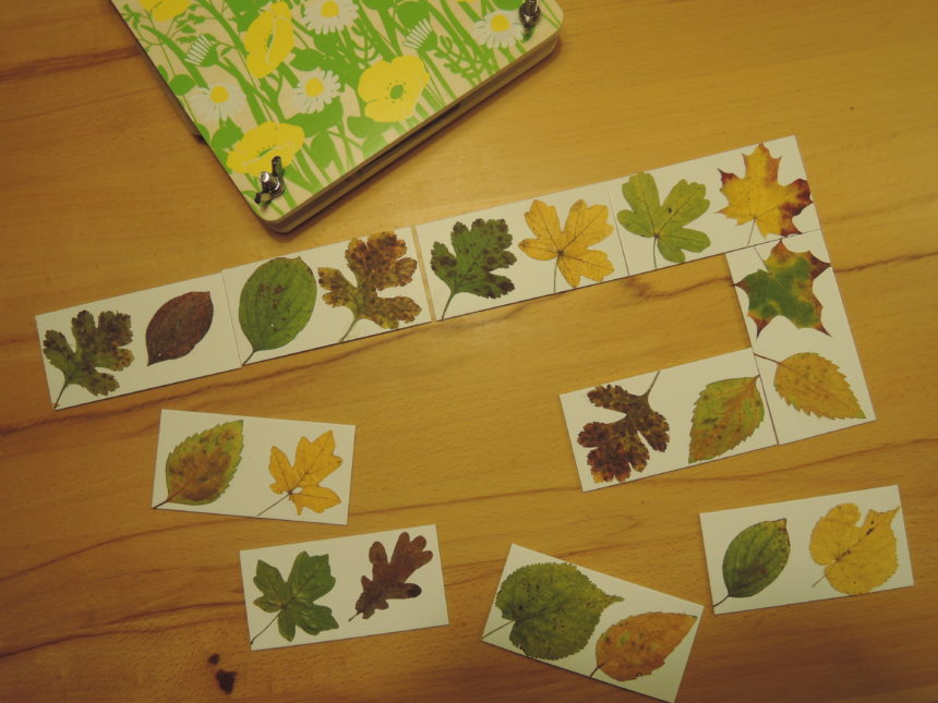 Bastelbeitrag: Blätterdomino mit echten Blättern